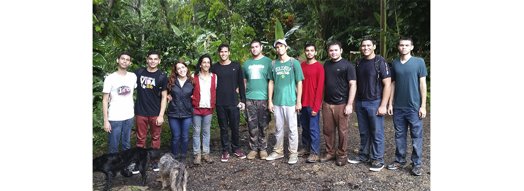 Puerto Rico needs foresters, more than ever.