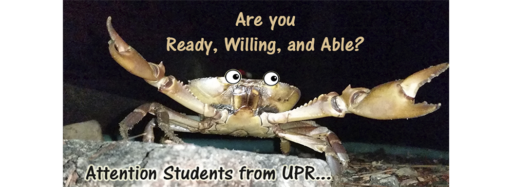 University Students from UPR – We need you!