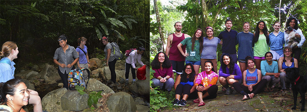 Earthwatch Teams over the years