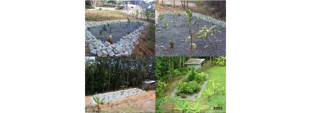 Wastewater Garden at Las Casas de la Selva since 2004