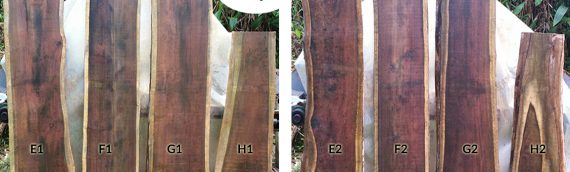 Mahoe Hardwood available now – December 2016