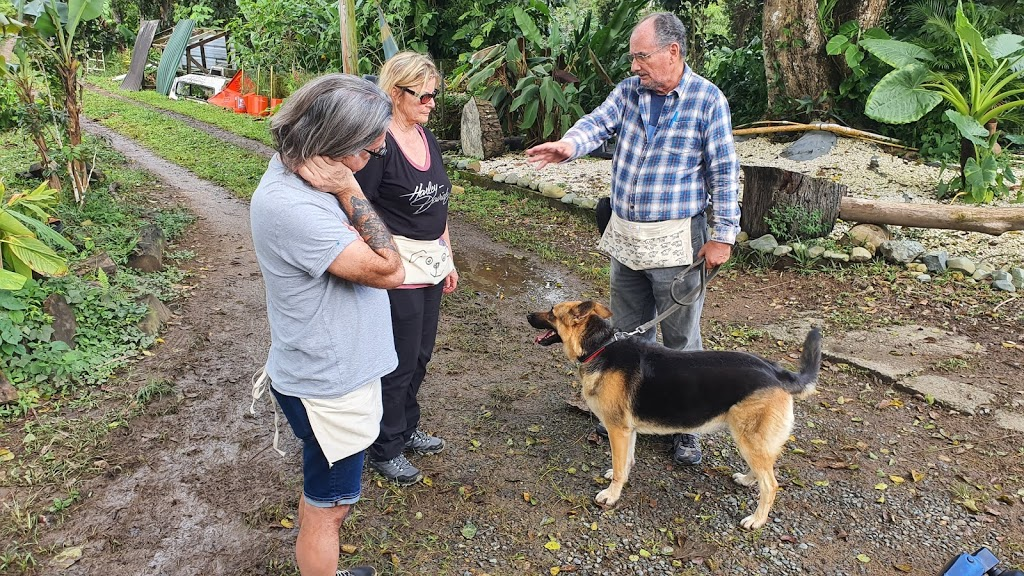 Dog Training Team at Las Casas de la Selva
