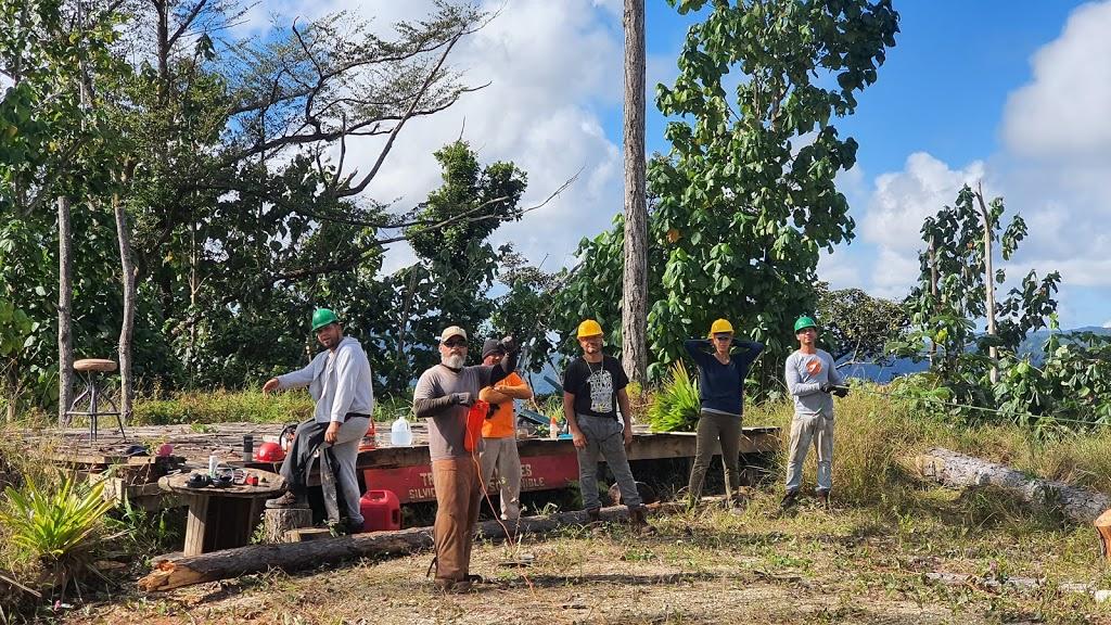 Chainsaw Training Workshop at Las Casas de la Selva